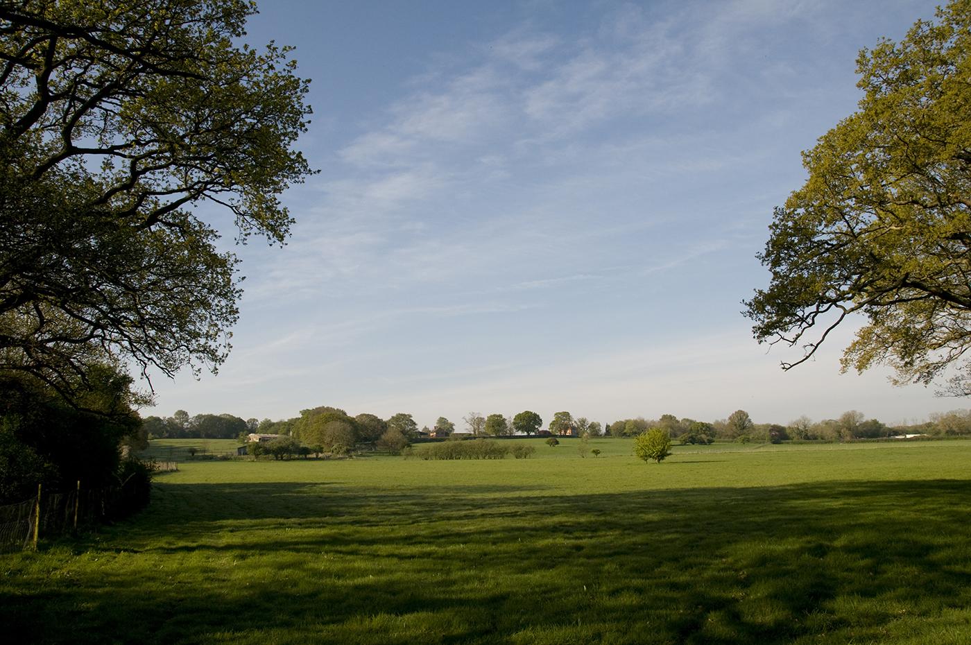 Working Farm - Heath Farm - Field